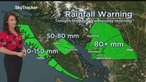 Timeline of heavy rain expected in Metro Vancouver beginning Tuesday (01:43)