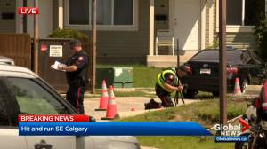 Toddler rushed to hospital after hit and run in southeast Calgary