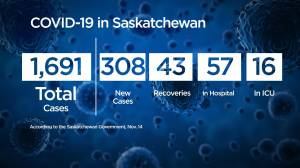 Saskatchewan announces 308 new cases of COVID-19 setting new single day record (01:04)