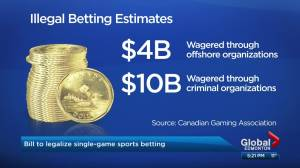 Single game sports betting a step closer to reality in Canada (04:02)