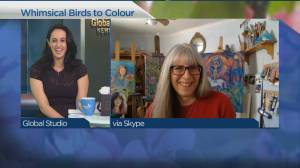 Whimsical Birds to Colour (04:00)