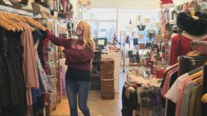 """It could be very damaging"": Retail Council of Canada warns the toll this year's Christmas shopping season could have on retailers, especially smaller ones (02:23)"
