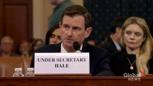 David Hale testifies in impeachment hearings, says withholding aid is 'not normal' in way U.S. functions