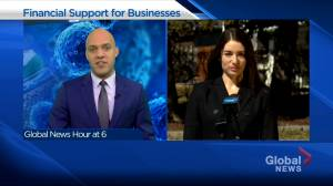 Alberta small business advocate welcomes provincial government's new financial aid for sector (04:28)