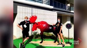 Calgary siblings make Olympic debut in Tokyo pool (02:06)