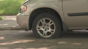 Tires slashes during vandalism spree in Edmonton's Forest Heights neighbourhood