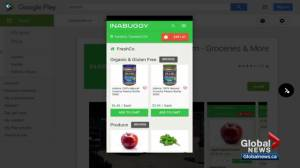 Online grocery delivery service called Inabuggy launches in Edmonton