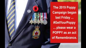 The Legion's Poppy Campaign is underway in Kingston