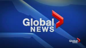 Global News at 6 – Nov. 12, 2019