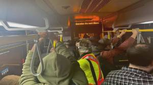 Overcrowding Toronto buses raise COVID-19 variant concerns among transit users, drivers (02:04)