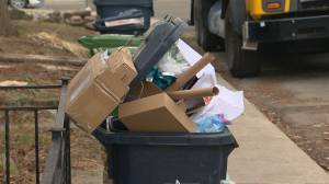Toronto Blue Bin confusion over holiday recycling items