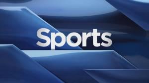 Global Lethbridge Sports Recap: Nov. 25