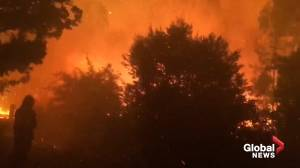 Fire crews battle bushfire to protect Australian homes from Currowan fire