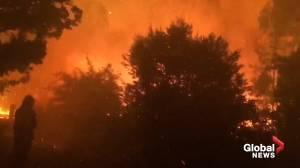 Fire crews battle bushfire to protect Australian homes from Currowan fire