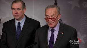 Chuck Schumer says Trump lawyers made 'compelling case' for why senate should call witnesses in impeachment trial
