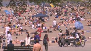 Thousands of warning tickets issued for park crowding