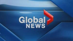 Global News Hour at 6 Edmonton: March 29, 2020