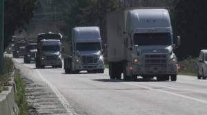 B.C. truckers hope to get COVID-19 vaccine with some help from Washington State (03:47)