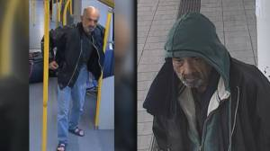 Transit police investigate racially-motivated attack on SkyTrain