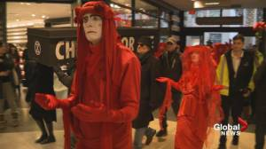 Black Friday activists march through downtown Vancouver mall, block streets