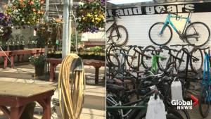Greenhouses, outdoor gear shops in Edmonton thriving during the pandemic (01:31)