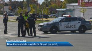 New developments in weekend hit-and-run crash that injured three in Toronto
