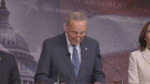 Schumer says Lev Parnas interview, GAO report on Ukraine aid increases need for witnesses, documents in trial