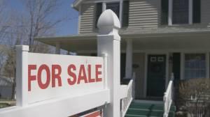 Okanagan house sales skyrocket, real estate officials say (01:55)