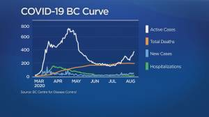 B.C. health officials to provide latest on COVD-19 curve