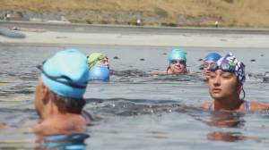 B.C. open water swimmers go to great lengths to overcome anxiety (02:02)