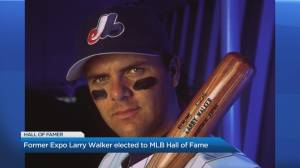 Canadian slugger Larry Walker headed for the Baseball Hall of Fame