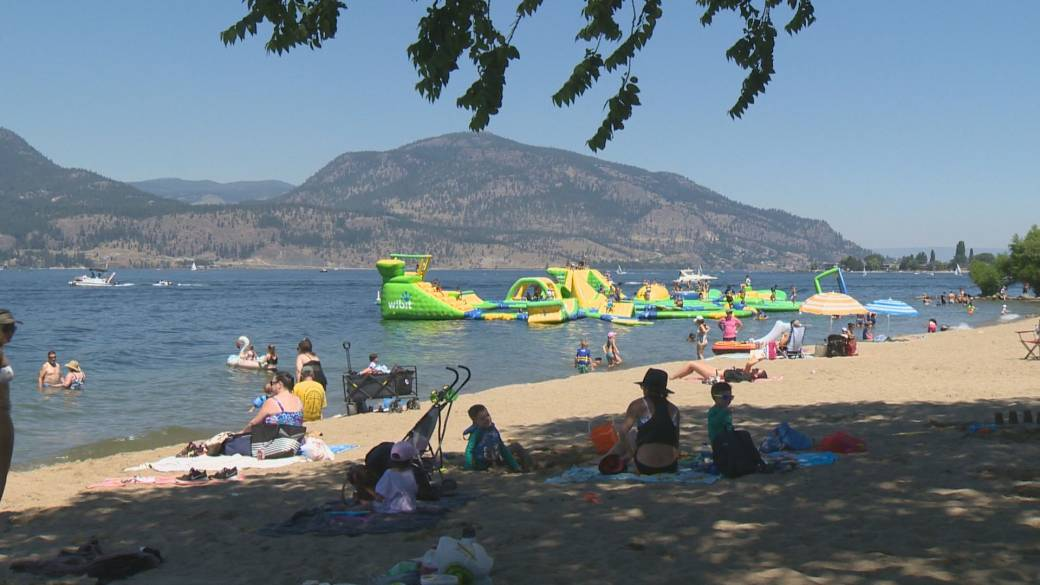 """Click to play video: '""""All of our trees are drought-stressed,"""" Okanagan's heat wave takes toll on trees and vegetation'"""