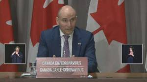 Coronavirus outbreak: CRA, Service Canada working to determine number of 'actual' CERB fraud cases