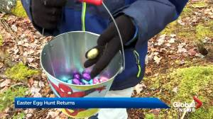 Annual egg hunt returns after COVID-19 forced hiatus (01:30)