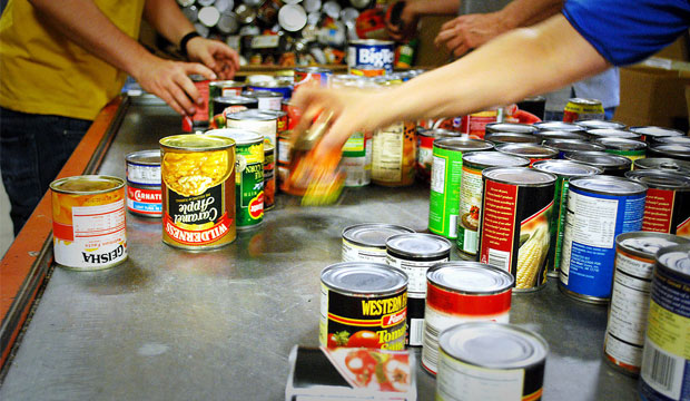 Single adults seeking food bank supports in Lethbridge