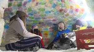 Kingston, Ont., family to sleep in igloo to raise money for homeless youth (01:44)
