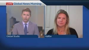 Federal election talk with Lori Turnbull (06:28)