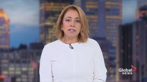 Global News Morning headlines: Tuesday October 8, 2019