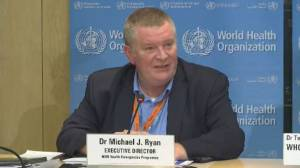 COVID-19: WHO official says outbreak not at stage to declare pandemic