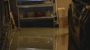 Several Burnaby homes flooded after water main break