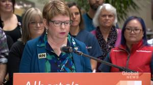 'Government should not be in the room' during nurses wage talks: union