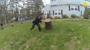 Police catch pig with garbage can after 45 minute pursuit
