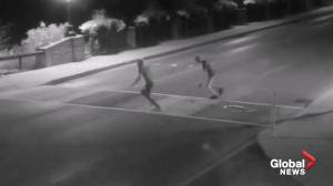 Police issue appeal after Pride crosswalk defaced in Owen Sound, Ont. (00:58)