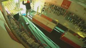 Caught on video: inept Surrey thief trapped