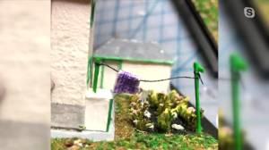 Manitoba artist making miniatures (03:21)