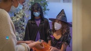 Fewer Canadians to hand out Halloween candy, trick-or-treat this year: Ipsos poll (02:12)