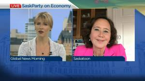 Sask. Party candidate on plans to address economy
