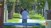 Play video: Brampton neighbourhood tops GTA in high COVID-19 positivity rate