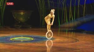 A look at Cirque Du Soleil: Amaluna