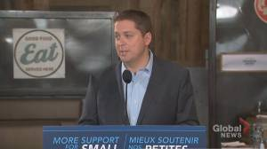 Federal Election 2019: Scheer calls appointment of Assad-friendly Syrian honorary consul 'outrageous'